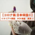 【コロナ禍 日本帰国⑥】イタリアへ帰国 PCR検査 東京②